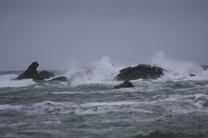 Stormy day on Haida Gwaii